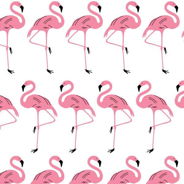 Flamingo-Rosy-Roller-Blind
